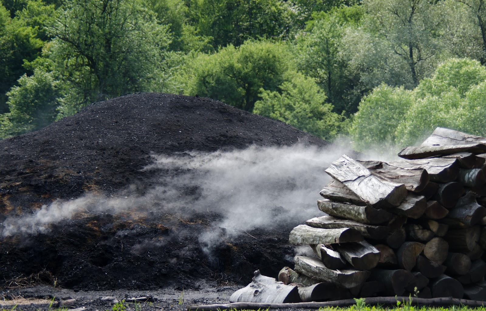 Criț-la cărbunar