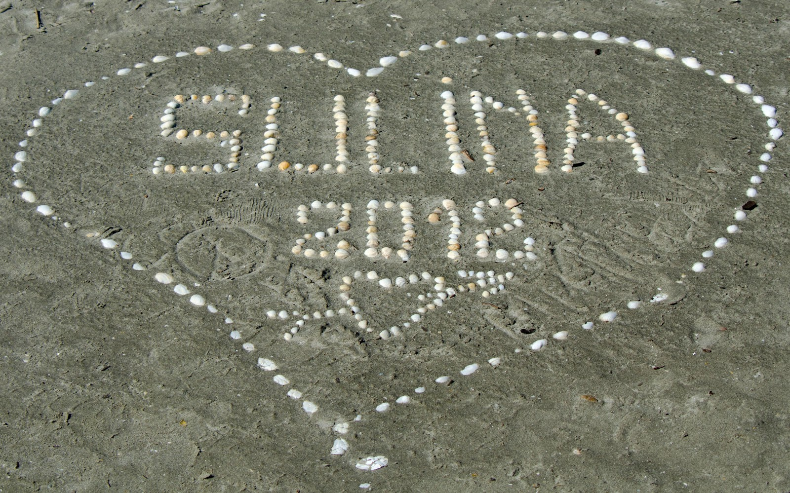 2012-08-3148sulina2